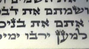 Torah-BW