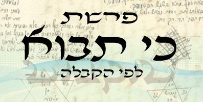 Aktuális hetiszakaszunkról: Ki szóvaj (כִּי תָבוֹא)