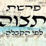 Következő hetiszakaszunk: Tecáve (תְּצַוֶּה)
