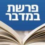 Következő hetiszakaszunk: Bámidbár (בְּמִדְבַּר)