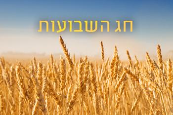 Készülhetünk Sávuotra, szombaton este beköszönt a Tóraadás ünnepe