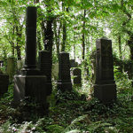 Megkezdődött a farkasréti és az óbudai zsidó temető állapotának rendezése