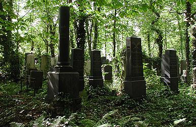 Sírokat romboltak a farkasréti zsidó temetőben