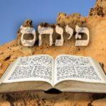 Következő hetiszakaszunk: Pinchász (פִּינְחָס)