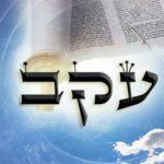 Következő hetiszakaszunkról: Ékev (עֵקֶב)
