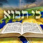 Következő hetiszakaszunkról: Ki Távó (כִּי תָבוֹא)