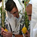 Amit Szukkot ünnep szokásairól, imarendjéről tudni érdemes