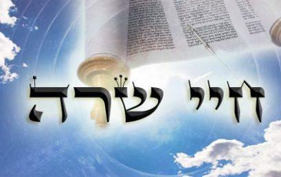 Következő hetiszakaszunk: Chájé Szárá (חַיֵּי שָׂרָה)