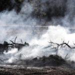 Végre eloltották a tüzeket Izraelben