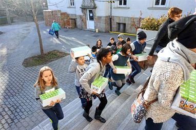 Önkéntesek, és scheiberes diákok osztottak gyümölcsöt a betegeknek