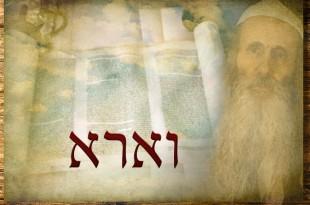 Következő hetiszakaszunk: Váéra (וָאֵרָא)