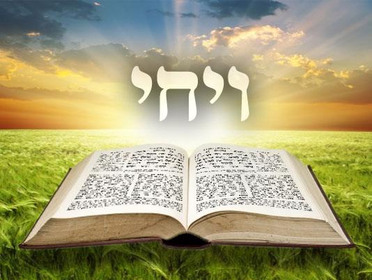 Következő hetiszakaszunk: Vájchi (וַיְחִי)