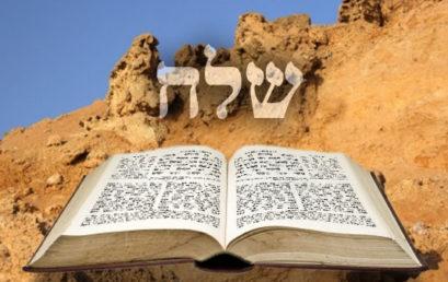Következő hetiszakaszunk: Slach-Löchá (שְׁלַח-לְךָ)