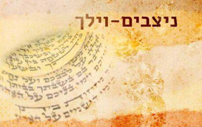 Következő hetiszakaszunk: Nicávim-Vájélech (נִצָּבִים-וַיֵּלֶךְ)