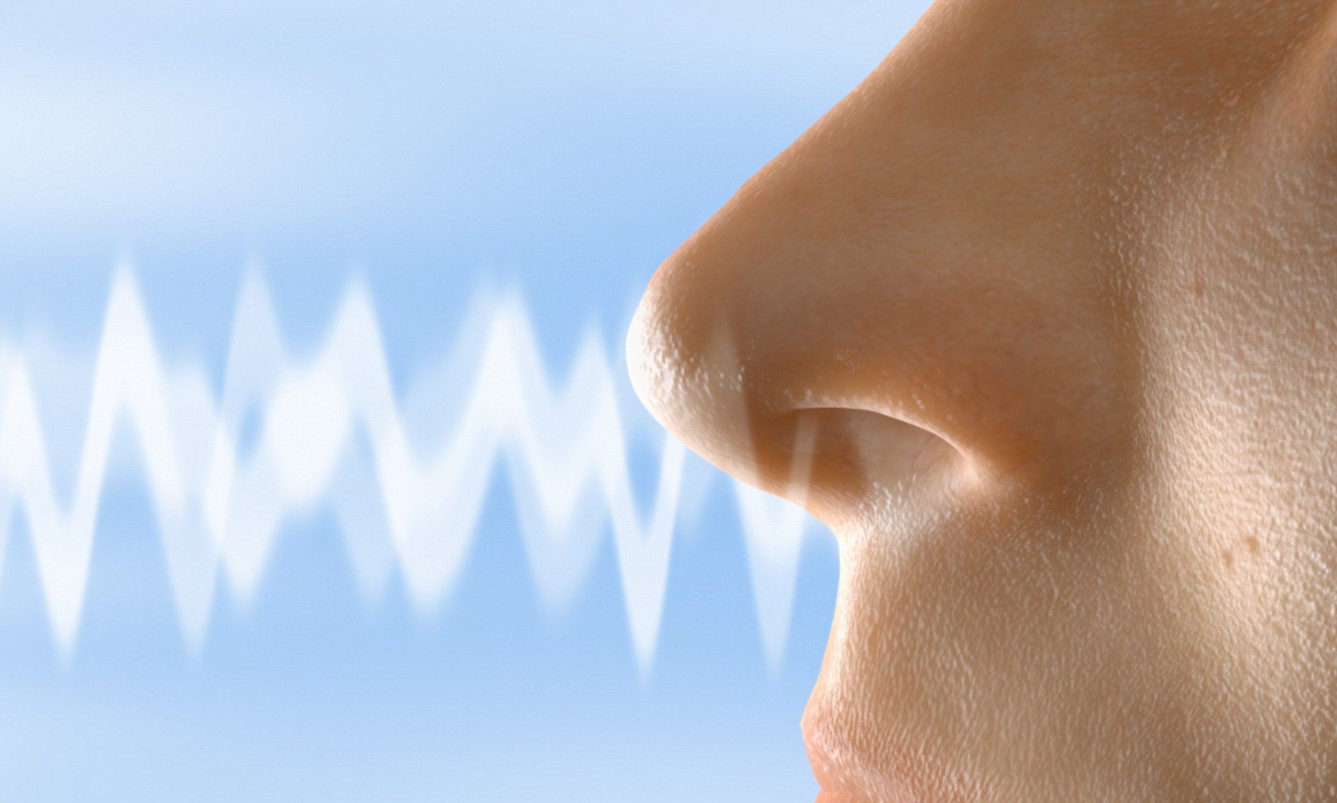 Otthonról végezhető szaglástesztet fejlesztettek ki izraeli kutatók