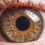 Szintetikus szaruhártya: Elvégzik az első beavatkozásokat embereken is