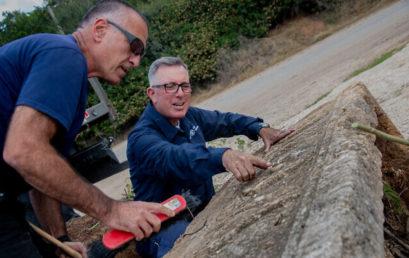 Két 1800 éves szarkofágot fedeztek fel egy izraeli szafariparkban