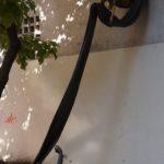 Ingyenes városnéző sétát tartanak a régi pesti zsidónegyedben